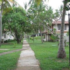 Отель Kosgoda Beach Resort фото 7