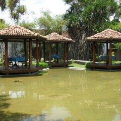 Отель Kosgoda Beach Resort фото 3