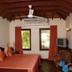 Отель Kosgoda Beach Resort Шри-Ланка, Косгода - отзывы, цены и фото номеров - забронировать отель Kosgoda Beach Resort онлайн комната для гостей фото 5