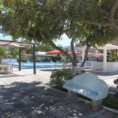 Отель Calypso Hotel Cancun Мексика, Канкун - отзывы, цены и фото номеров - забронировать отель Calypso Hotel Cancun онлайн сад