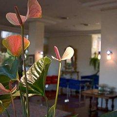 Отель Recina Hotel Италия, Монтекассино - отзывы, цены и фото номеров - забронировать отель Recina Hotel онлайн гостиничный бар