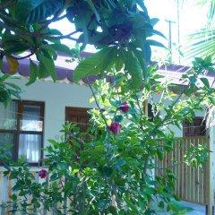 Отель Kiyi Pansiyon фото 2