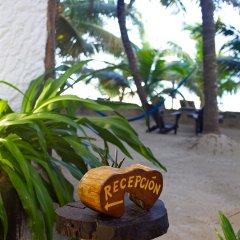 Отель Beachfront Hotel La Palapa - Adults Only Мексика, Остров Ольбокс - отзывы, цены и фото номеров - забронировать отель Beachfront Hotel La Palapa - Adults Only онлайн парковка