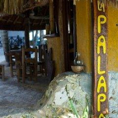 Отель Beachfront Hotel La Palapa - Adults Only Мексика, Остров Ольбокс - отзывы, цены и фото номеров - забронировать отель Beachfront Hotel La Palapa - Adults Only онлайн фото 13