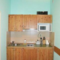Апарт-отель Невский 78 мини-кухня в номере