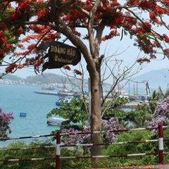 Отель Bao Dai s Villas Вьетнам, Нячанг - отзывы, цены и фото номеров - забронировать отель Bao Dai s Villas онлайн фото 2