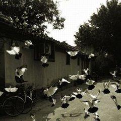 Отель Beijing Hutong Culture Inn фото 2