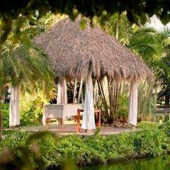 Отель Melia Puerto Vallarta - Все включено фото 9