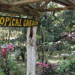 Отель Chachagua Rainforest Ecolodge фото 12