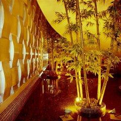 Chinflux Mandarin Hotel фото 3