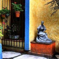 Отель La Casita del Patio Verde Мексика, Мехико - отзывы, цены и фото номеров - забронировать отель La Casita del Patio Verde онлайн