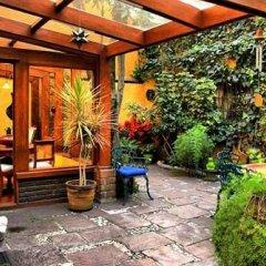 Отель La Casita del Patio Verde Мексика, Мехико - отзывы, цены и фото номеров - забронировать отель La Casita del Patio Verde онлайн фото 4