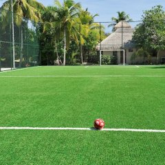 Отель Ayada Maldives спортивная площадка