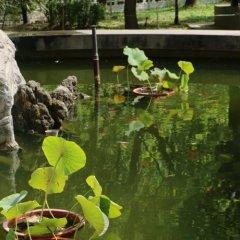 Отель Chongqing Hotel Китай, Пекин - отзывы, цены и фото номеров - забронировать отель Chongqing Hotel онлайн спа фото 2