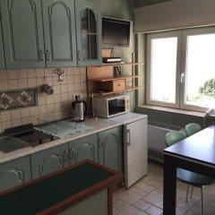 Апарт-Отель Villa Edelweiss 4* Апартаменты с различными типами кроватей фото 13