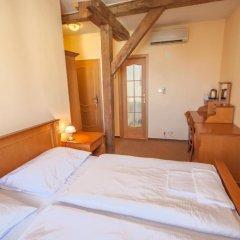 Отель Brezina Pension 3* Номер Делюкс с различными типами кроватей
