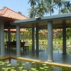 Отель Serene Pavilions Шри-Ланка, Ваддува - отзывы, цены и фото номеров - забронировать отель Serene Pavilions онлайн фото 3