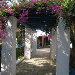 Palm Bay Hotel вид на фасад фото 2