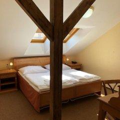 Отель Brezina Pension 3* Стандартный номер с различными типами кроватей фото 5