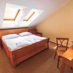 Отель Brezina Pension 3* Стандартный номер с различными типами кроватей