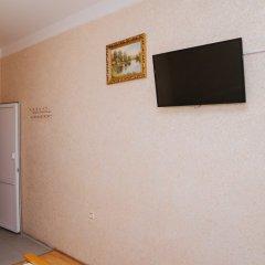 Гостиница Аниш Стандартный номер с различными типами кроватей фото 6