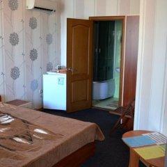 Гостиница Guest House Alina в номере