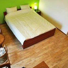 Отель Namsan Hotel Praha Чехия, Прага - отзывы, цены и фото номеров - забронировать отель Namsan Hotel Praha онлайн комната для гостей фото 2