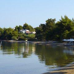 Отель Anthemus Sea Beach Hotel & Spa Греция, Ситония - 2 отзыва об отеле, цены и фото номеров - забронировать отель Anthemus Sea Beach Hotel & Spa онлайн приотельная территория