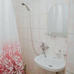 Гостиница Аниш Стандартный номер с различными типами кроватей фото 10