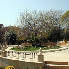 Отель Buta Азербайджан, Баку - отзывы, цены и фото номеров - забронировать отель Buta онлайн
