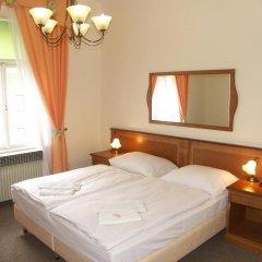 Отель Brezina Pension 3* Номер Делюкс с различными типами кроватей фото 2