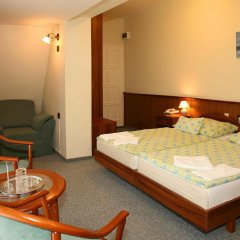Отель Bástya Wellness Hotel Венгрия, Силвашварад - 2 отзыва об отеле, цены и фото номеров - забронировать отель Bástya Wellness Hotel онлайн комната для гостей фото 4