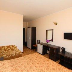 Гостиничный Комплекс Русич 2* Номер Комфорт с разными типами кроватей фото 3