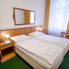 Отель Brezina Pension 3* Номер Делюкс с различными типами кроватей фото 3
