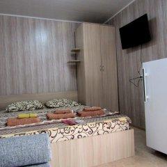 Гостевой дом Роза Улучшенный номер с различными типами кроватей фото 2