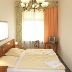 Отель Brezina Pension 3* Номер Делюкс с различными типами кроватей фото 8