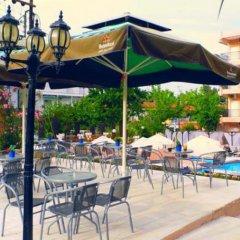 Отель Golden Beach Греция, Ситония - отзывы, цены и фото номеров - забронировать отель Golden Beach онлайн бассейн фото 5