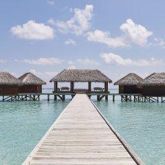 Отель Conrad Maldives Rangali Island Мальдивы, Хувахенду - 8 отзывов об отеле, цены и фото номеров - забронировать отель Conrad Maldives Rangali Island онлайн приотельная территория фото 10