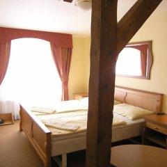 Отель Brezina Pension 3* Номер Делюкс с различными типами кроватей фото 6