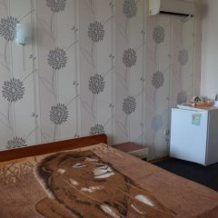 Гостиница Guest House Alina удобства в номере фото 2