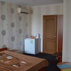 Гостиница Guest House Alina удобства в номере