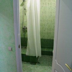 Гостиница в Котельниках Диана Стандартный номер с различными типами кроватей фото 6