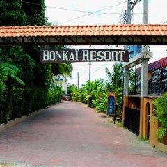 Отель Bonkai Resort Таиланд, Паттайя - 1 отзыв об отеле, цены и фото номеров - забронировать отель Bonkai Resort онлайн фото 11