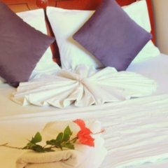 Alaya Inn in North Male Atoll, Maldives from 147$, photos, reviews - zenhotels.com guestroom