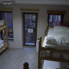 Vegan Bella Vista Hostel Кровать в общем номере двухъярусные кровати фото 17