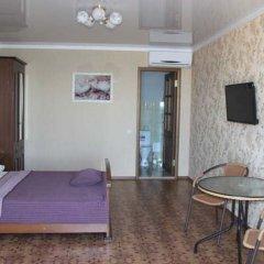 Гостиница Mirnaya Guest House в Сочи отзывы, цены и фото номеров - забронировать гостиницу Mirnaya Guest House онлайн комната для гостей фото 5