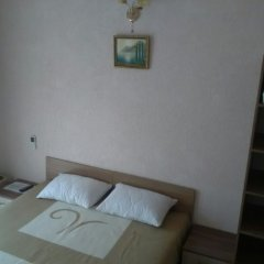 Мини-Отель Виктория Стандартный номер с различными типами кроватей фото 3