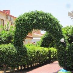 Отель Windmills Hotel Apartments Кипр, Протарас - отзывы, цены и фото номеров - забронировать отель Windmills Hotel Apartments онлайн фото 4