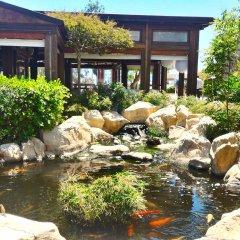 Capo Bay Hotel Протарас бассейн фото 12