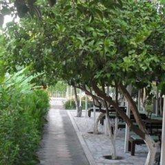 Konar Hotel Турция, Кемер - отзывы, цены и фото номеров - забронировать отель Konar Hotel - All Inclusive онлайн фото 3